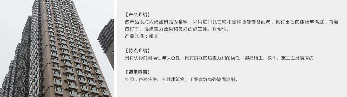 �h保(bao)耐候(hou)漆1440_09.jpg